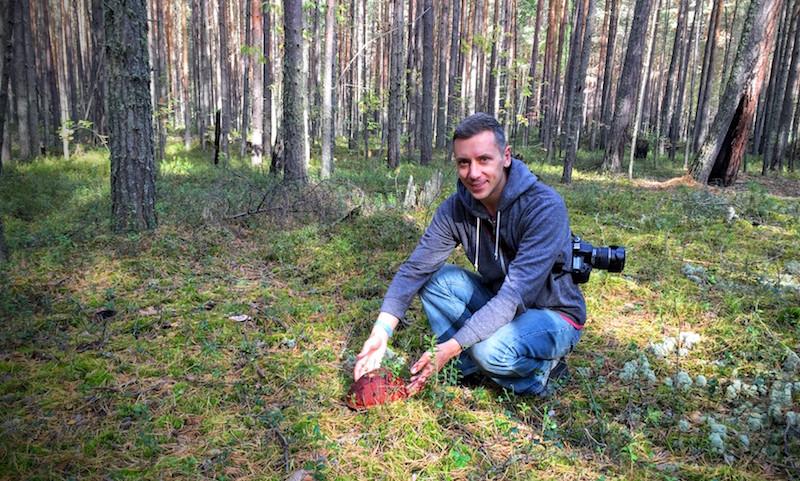 photo-forest.JPG