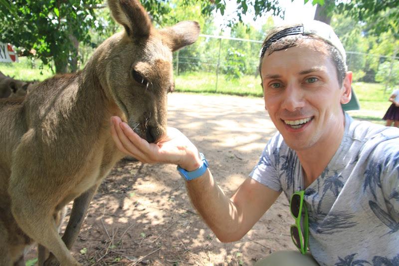 photo-kangaroo
