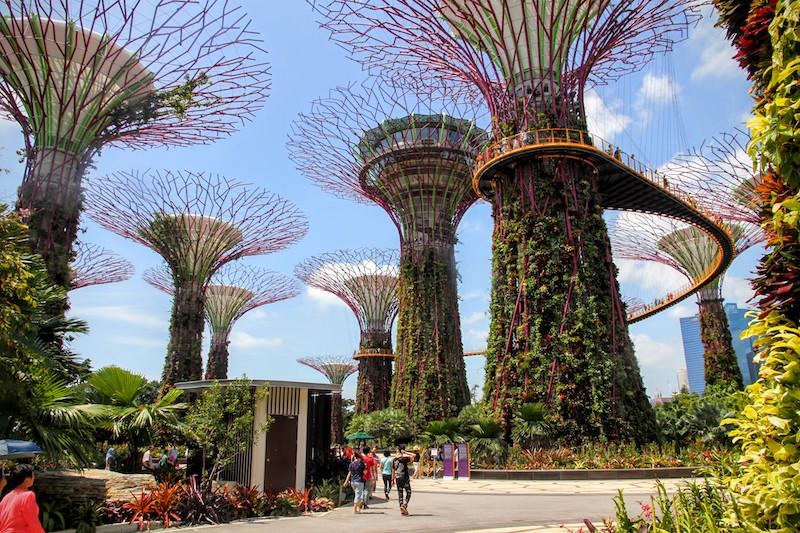 photo-singapore.JPG